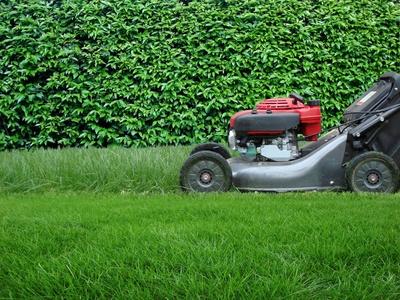 grass cutting lawnmower